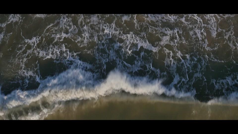 Video / Dat Watt Limited Edition